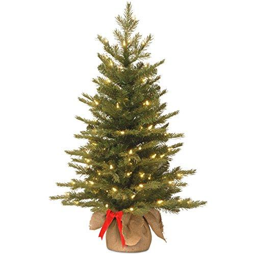 National Tree 3' Nordic Spruce Tree with 50 Warm White Battery Operated LED Lights with Timer