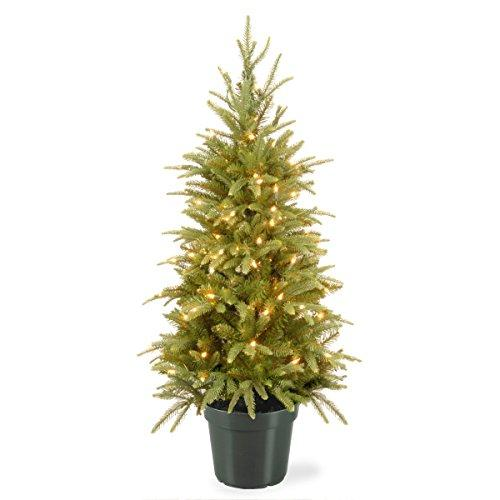 National Tree Weeping Spruce Tree with Clear Lights