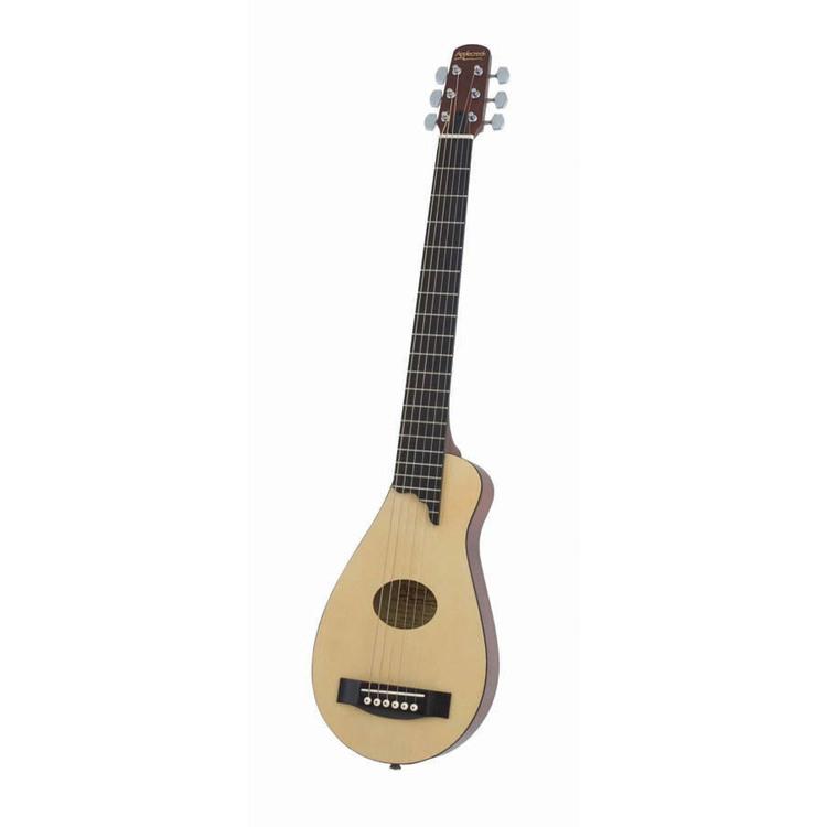 Travel Acoustic Guitar W/gigbg