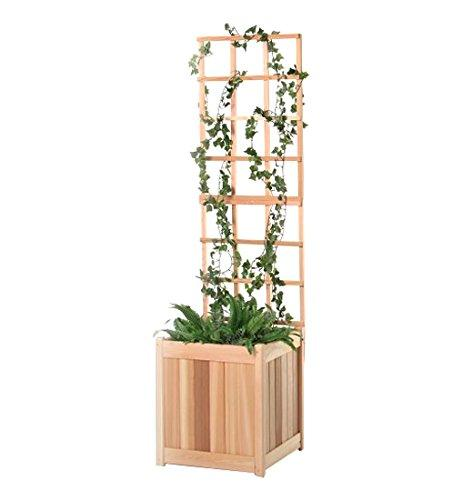 2 Pc. Cedar Planter With Trellis