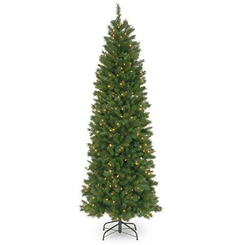 Pennington Fir Pencil Tree with Clear Lights
