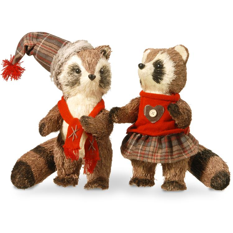 National Tree Raccoon Pair