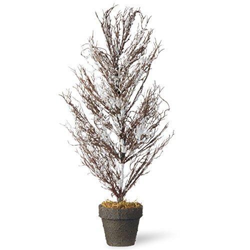 National Tree 28
