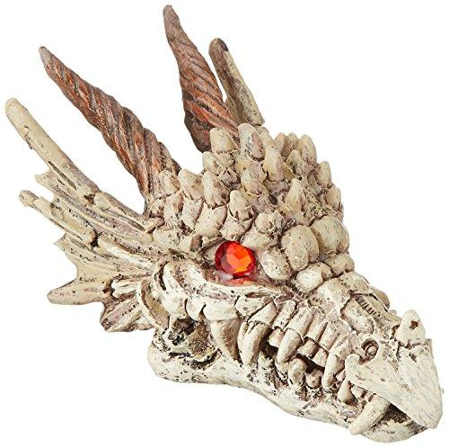 Dragon Skull-Gazer - 3? W X 5 ¾? D X 3? H