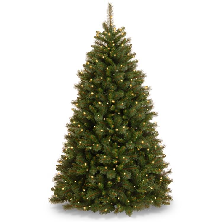 National Tree Rocky Ridge Medium Pine Tree with Clear Lights
