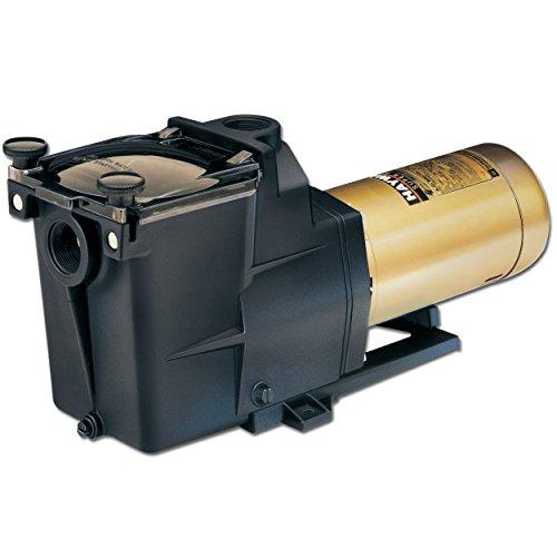 Super Pump 2 Hp Dual Speed Pool Pump