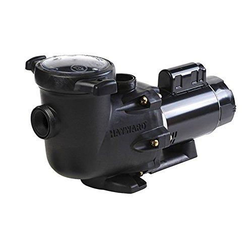 TriStar 2 Hp Dual Speed Pool Pump