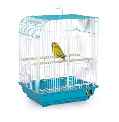 Prevue Pet Products Southbeach Flat Top Bird Cage Teal SP50061