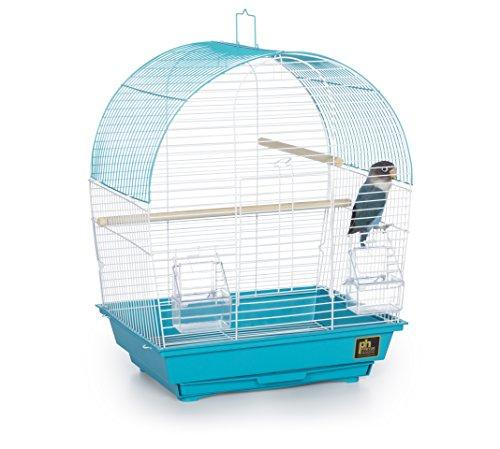 Prevue Pet Products Southbeach Dometop Bird Cage Teal SP50071