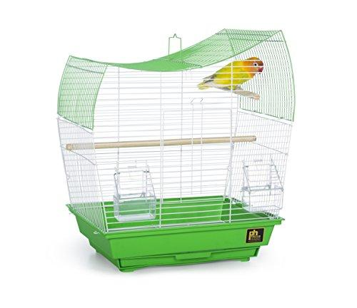 Prevue Pet Products Southbeach Wave Top Bird Cage Lime Green SP50081
