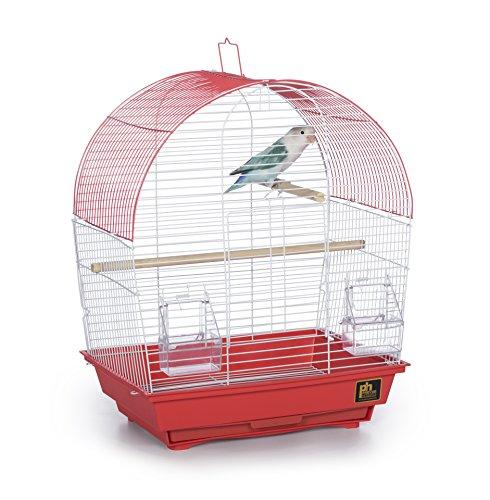 Prevue Pet Products Southbeach Dometop Bird Cage Coral SP50100