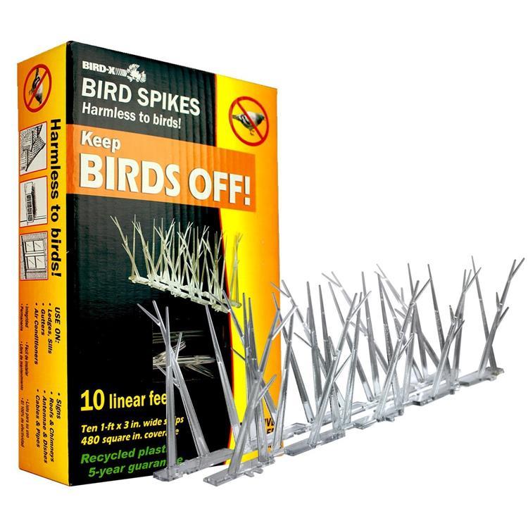 Plastic Bird Spikes, 10 Feet