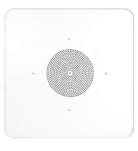 2'X2' G86 Ceiling Tile Speaker