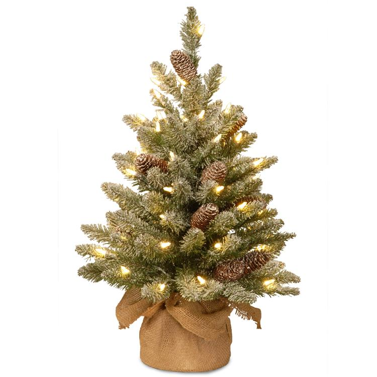 National Tree Snowy Concolor Fir Tree with Battery Operated LED Lights [Item # SR1-328-20-B1]
