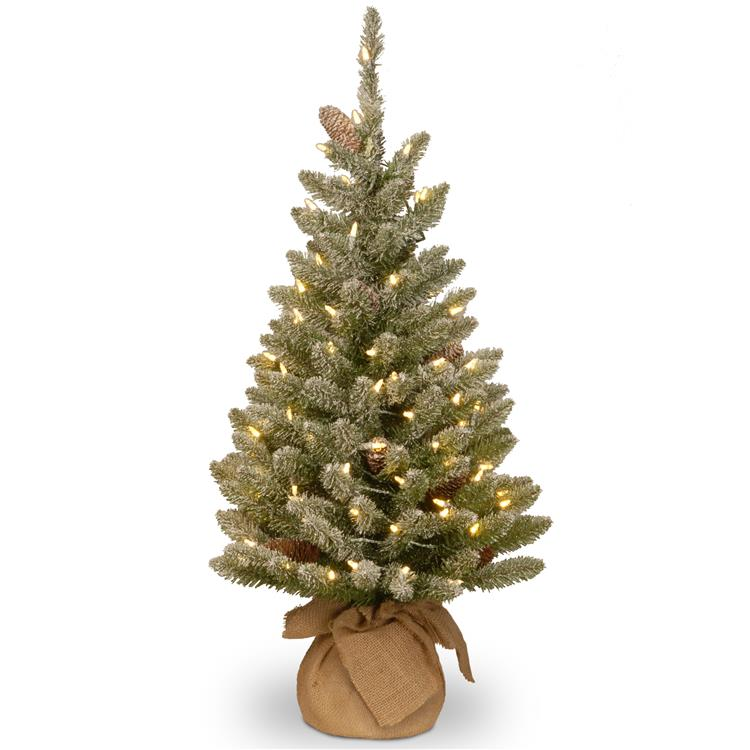 National Tree Snowy Concolor Fir Tree with Battery Operated LED Lights