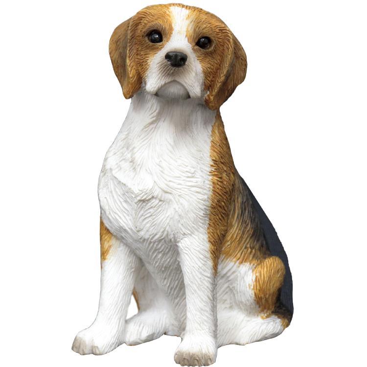 Sandicast Beagle