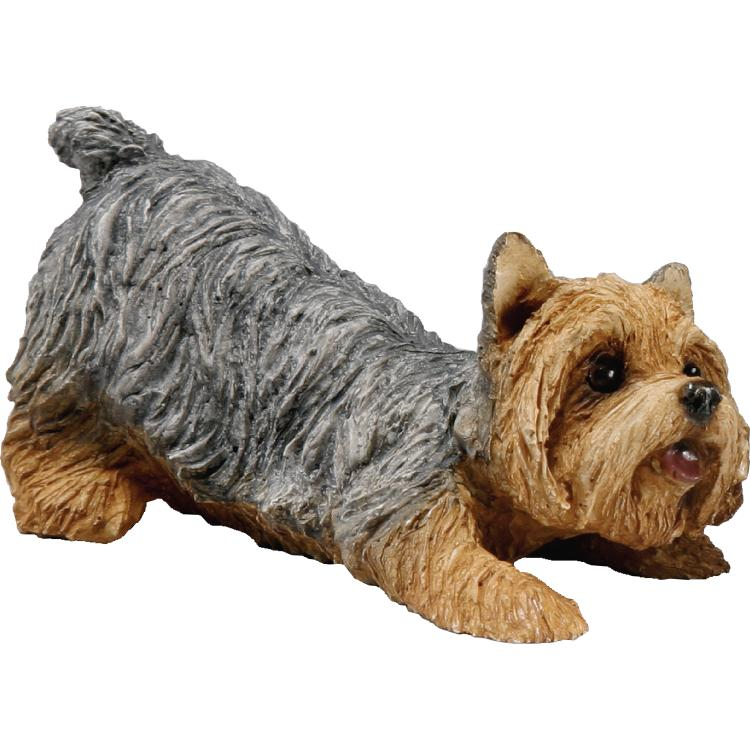 Sandicast Yorkshire Terrier