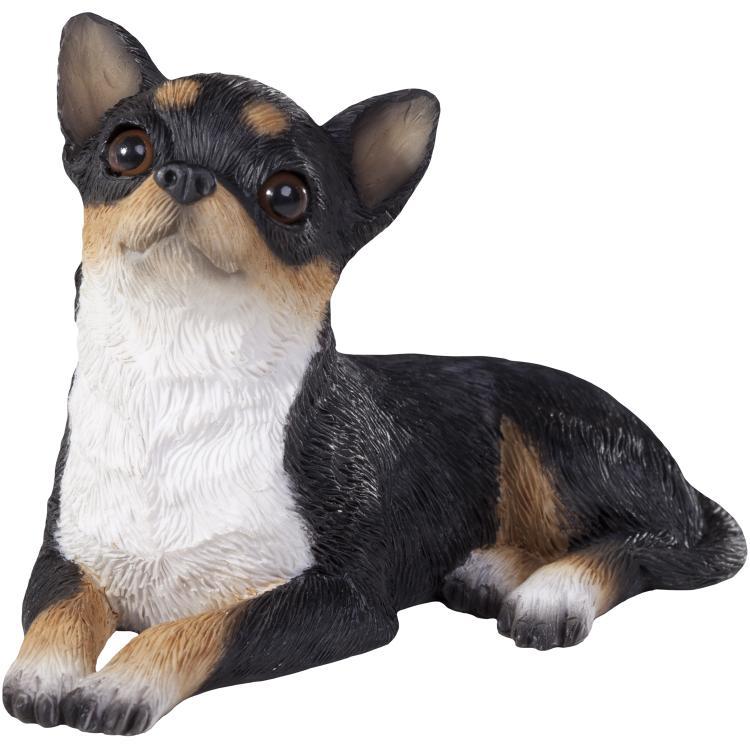 Sandicast Chihuahua