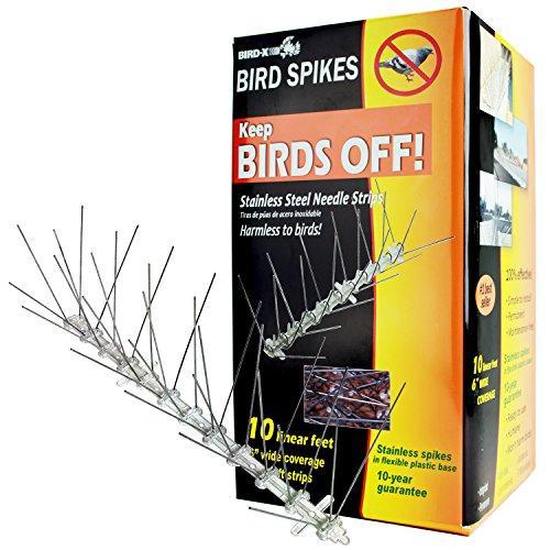 Stainless Steel Bird Spikes, 10 Feet