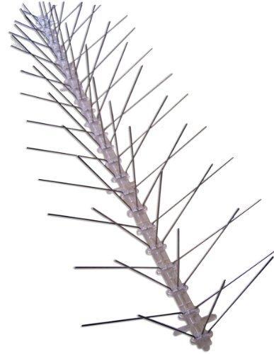 Stainless Steel Bird Spikes, 24 Feet
