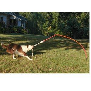 Small/Puppy Tether Tug