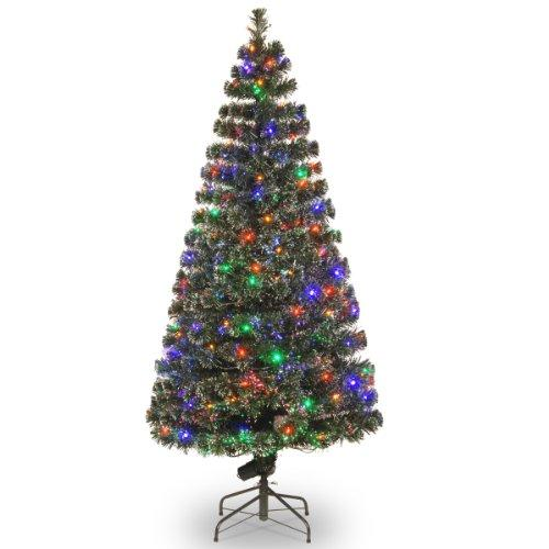 Christmas Trees with Multicolored Lights