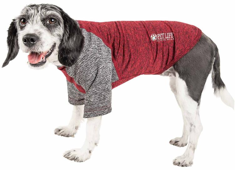 Pet Life ® Active 'Hybreed' 4-Way Stretch Two-Toned Performance Dog T-Shirt