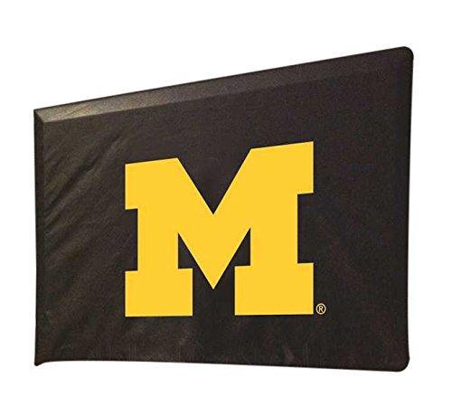 Michigan TV Cover