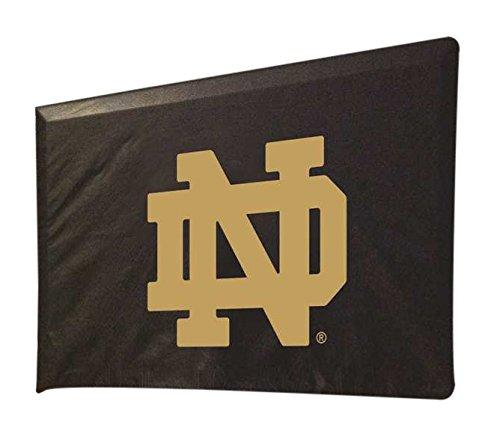 Notre Dame TV Cover