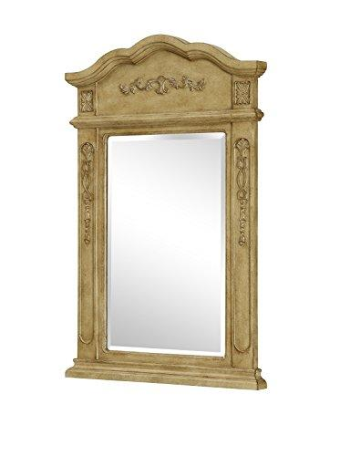 Danville 24 in. Traditional Mirror in Antique Beige