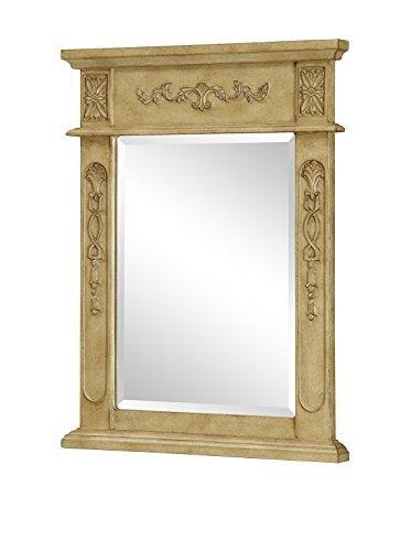 Danville 22 in. Traditional Mirror in Antique Beige