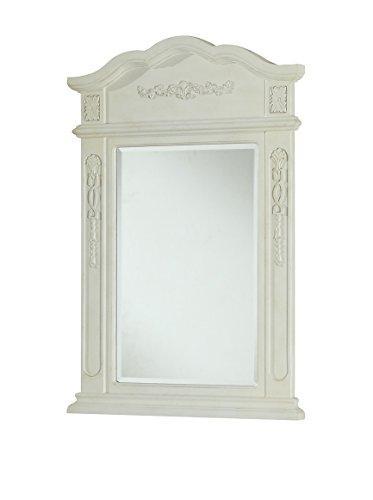 Danville 24 in. Traditional Mirror in Antique White