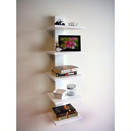 Spine Book Shelf