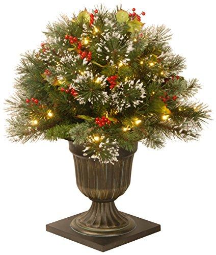 National Tree Wintry Pine Porch Bush with Clear Lights