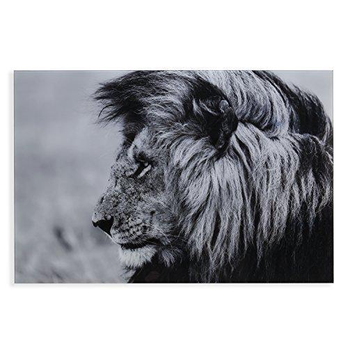 The Lion Glass Wall Art