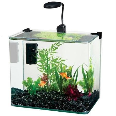 Penn Plax Radius Desktop Aquarium Kit - 3.4 Gal [Item # WW110K]