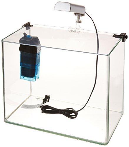 Penn Plax Radius? Desktop Aquarium Kit - 5 Gal