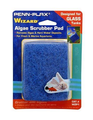 Algae Pad 3