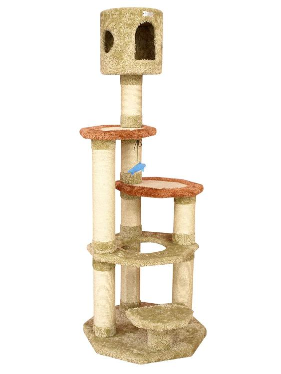 Cat Furniture & Scratchers