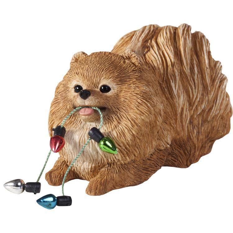 Sandicast Pomeranian