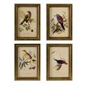 Set of 4 Wooden Bird Plaques